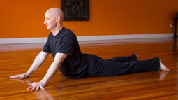 Yin Yoga Teacher Training: Foundations Module
