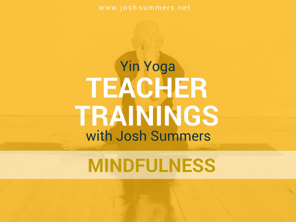 yin yoga, meditation, mindfulness, teacher trainings