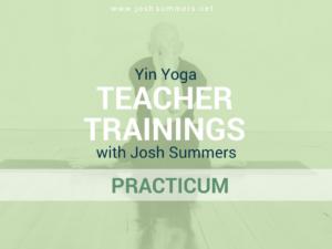 yin yoga, comprehensive training, teacher trainings