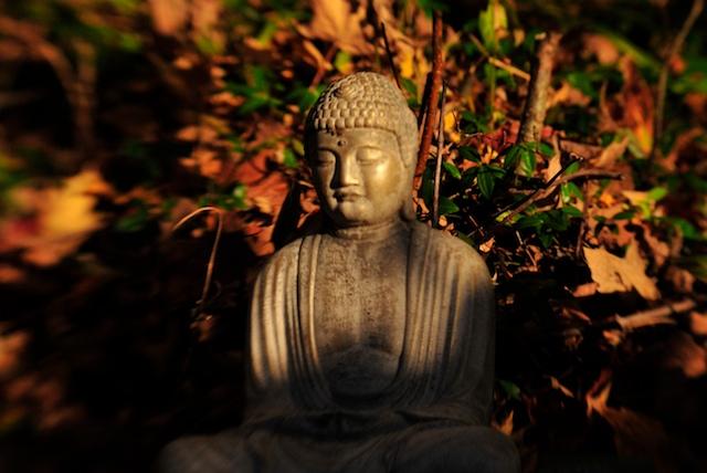spirit fire buddha