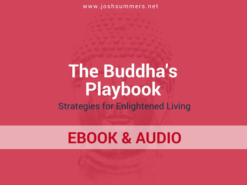 The Buddha's Playbook by Josh Summers