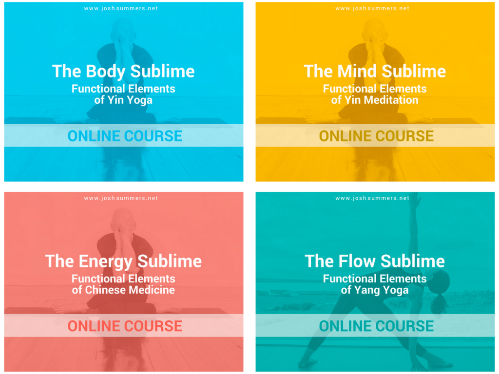 Learn the Functional Elements of Yin Yoga, Yin Meditation, Chinese Medicine, and Yang Yoga with Josh Summers and Terry Cockburn