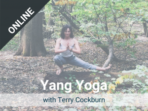 Yang Yoga with Terry: Offered each Thursday – a live, online class via Zoom. Recorded version is available in our Sangha Library.