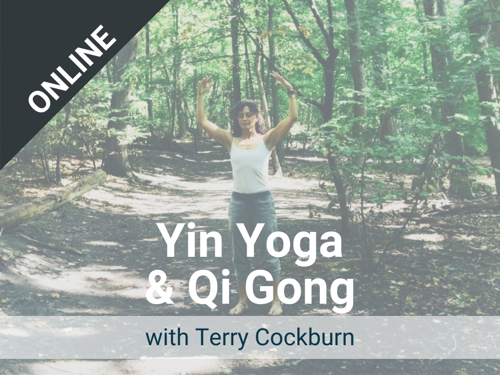 Yin Yoga and Qi Gong with Terry: Offered each Tuesday – a live, online class via Zoom. Recorded version is available in our Sangha Library.