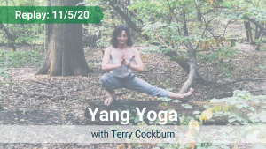 Yang Yoga with Terry – Recorded Live on Nov 5, 2020