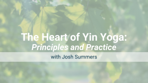 The Heart of Yin Yoga: Online Workshop – Recorded Live on Mar 6, 2021