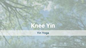 Knee Yin