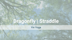 Dragonfly | Straddle