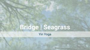 Bridge | Seagrass