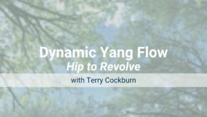 Hip to Revolve – Dynamic Yang Flow