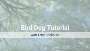 Bird Dog Tutorial