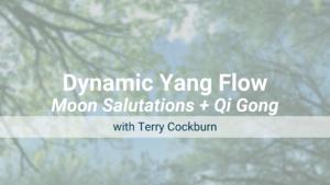 Moon Salutations and Qi Gong – Dynamic Yang Flow