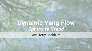 Sphinx to Stand – Dynamic Yang Flow