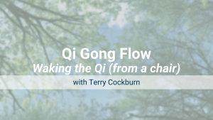 Waking the Qi (from a chair) – Qi Gong Flow