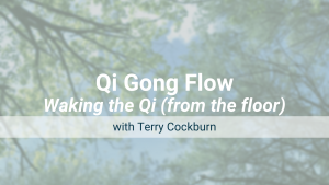 Waking the Qi (from the floor) – Qi Gong Flow