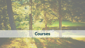 Our series of 7-10hr courses are designed to offer an in-depth introduction to the theory and practice of Yin Yoga, Chinese Medicine, Yang Yoga, and Meditation.