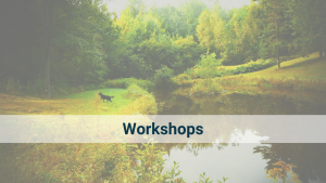 Our series of 2hr workshops cover the essential practical aspects of Yin Yoga, Qi Gong, Meditation and Yang Yoga.